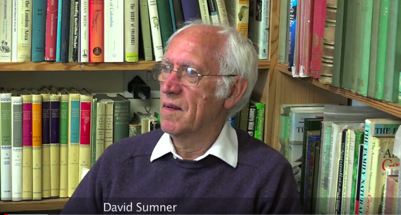 David Sumner – Co-founder of The Swallow Theatre